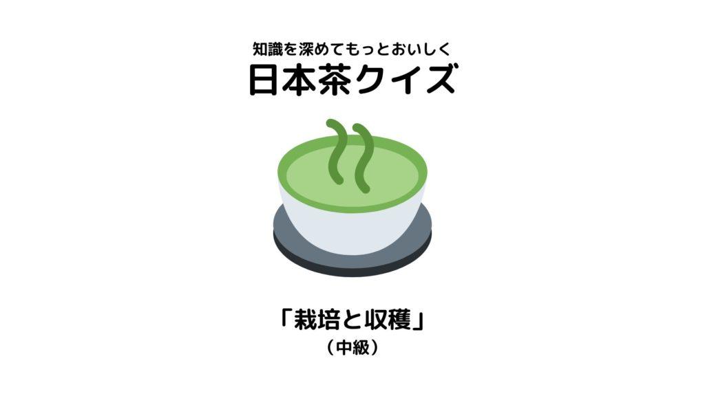 日本茶検定1級が作った日本茶クイズ【「栽培と収穫」(中級)】